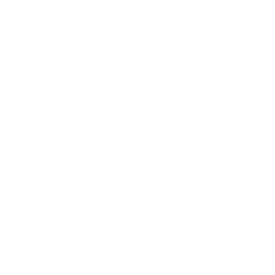 GUESS - страница 2